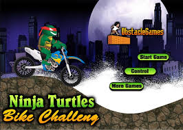 Turtles Bike